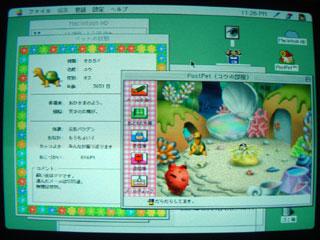 2008.4.19-002.jpg