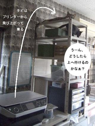 2010.8.17-001.jpg