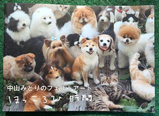 NakayamaMidori3.jpg