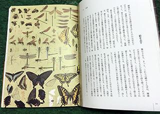 TuchiyaTeruo-1.jpg