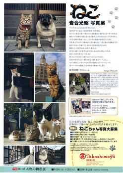 IwagoMitsuaki.jpg