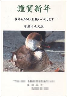 nenga2005-6.jpg