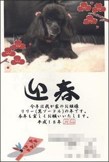 nenga2006-4.jpg