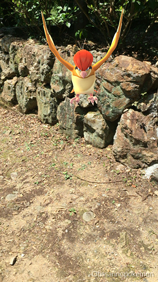 pokemongo-7.jpg