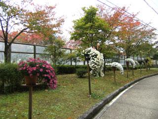 2012.11.13-010.jpg