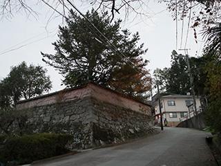 2018-11-18-(191).jpg