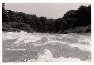 NihonRhine-(8).jpg