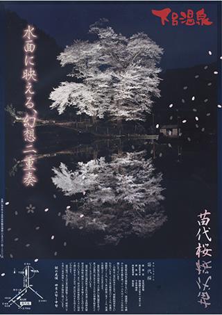 nawashiro-sakura.jpg
